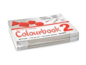 BLOCCO C.BOOK/2 24x33 RUVIDO 110G FG.20*